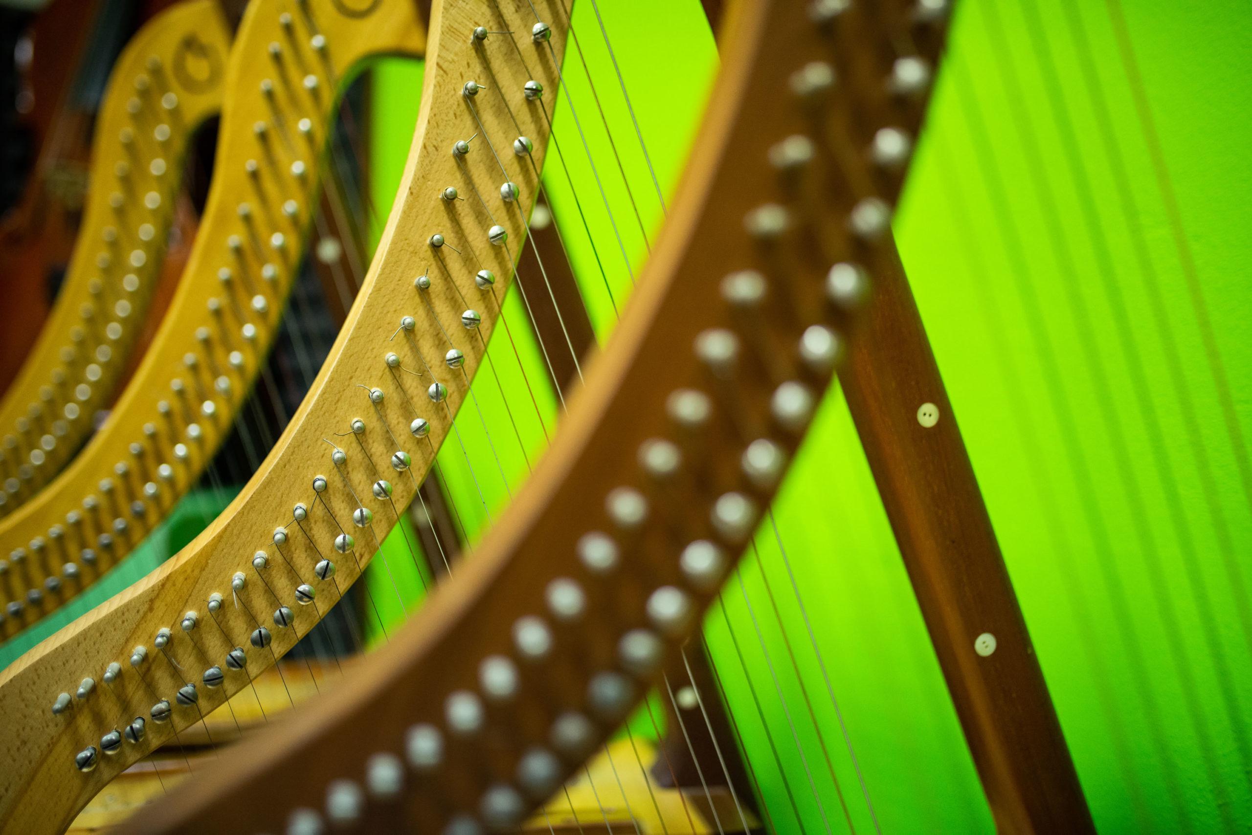 Dettaglio Arpe - Laboratorio Musicale A.F. Lavagnino di Tortona